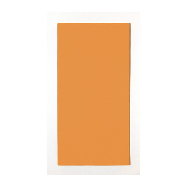 Orange-100x50-vertikal-Kategoriebild